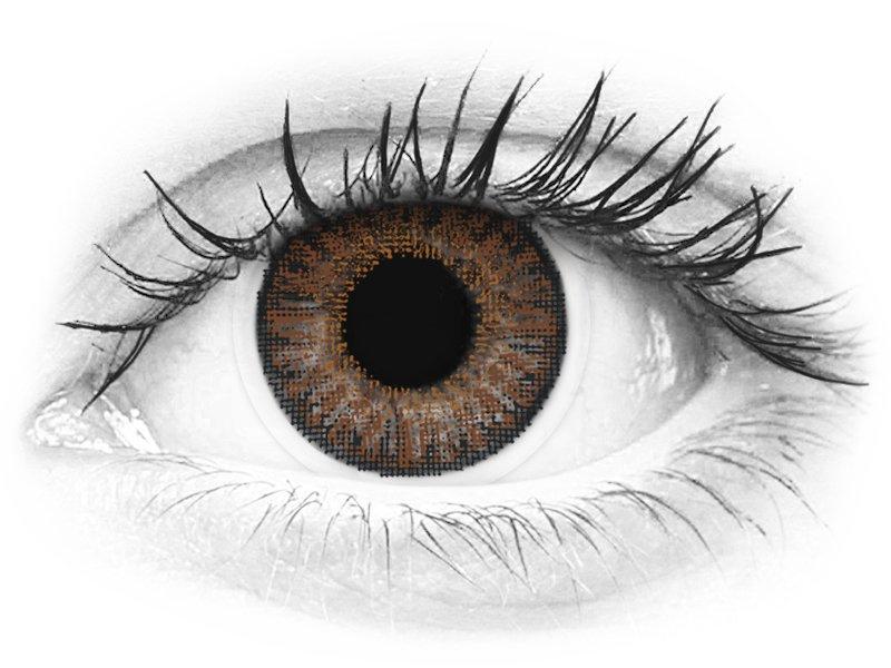 TopVue Color - Brown - nedioptrické jednodenní (10čoček)