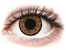 Barevné kontaktní čočky - ColourVUE Elegance Brown - nedioptrické (2čočky)