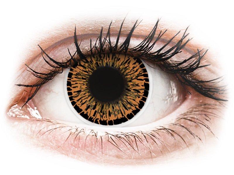 ColourVUE Elegance Brown - nedioptrické (2čočky) - Maxvue Vision
