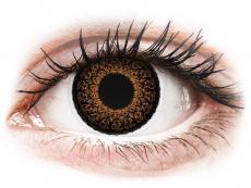 Barevné kontaktní čočky - ColourVUE Eyelush Brown - nedioptrické (2čočky)