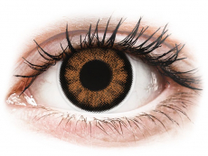 Hnědé kontaktní čočky - dioptrické - ColourVUE BigEyes Sexy Brown - dioptrické (2 čočky)