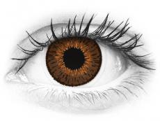 Expressions Colors Brown - nedioptrické (1čočka)