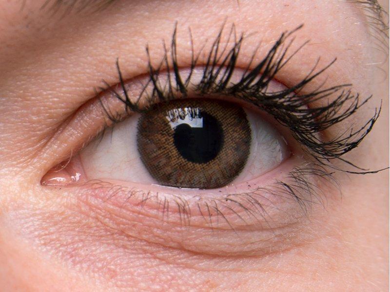 Brown na šedém oku